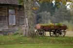 Kutsche vor altem Bauernhaus